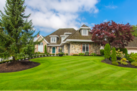 Should You Buy a Home in the Suburbs or Buy a Home With Land?