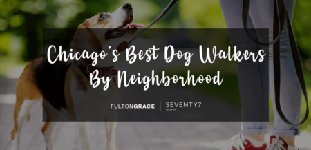 The Best Dog Walkers in Chicago By Neighborhood