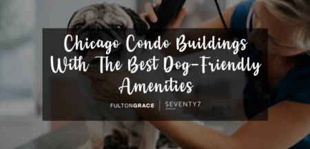 Chicago Condo Buildings With The Best Dog-Friendly Amenities