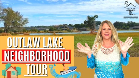 Outlaw Lake - Land O Lakes, Ski Lake neighborhood Tour