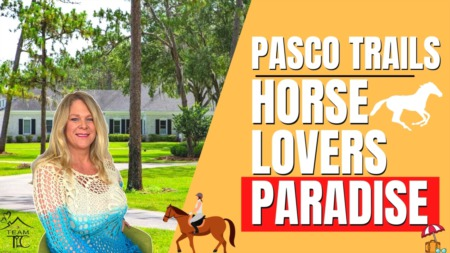 Pasco Trails - A horse lovers paradise Tampa FL