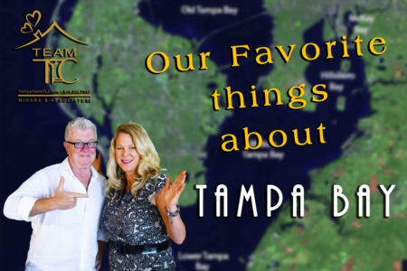 Our Favorite Things About Tampa Bay