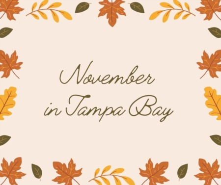 Things to do in Tampa Bay - Nov. 2021