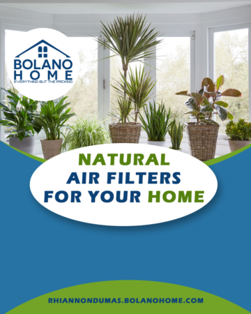 Natural Air Filters For Your Home
