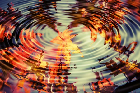 Fall Reflections On Mortgage Rates