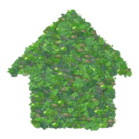 Why Going Green Can Help To Sell Your Home