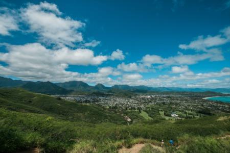 March 2020 Email Update Oahu Update