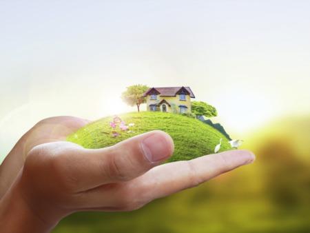 Buyers Blog Update 10/5/2018