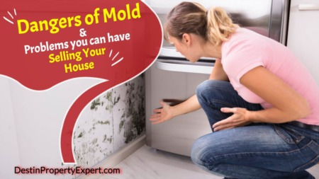 The Dangers of Mold and Problems You Can Have Selling Your House