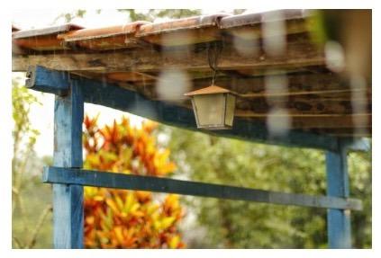 Are You Ready for the Rainy Season?
