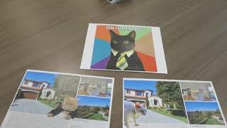 Luxury Real Estate and LOL CATS