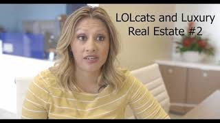 LOLcat Marketing Video episode #2