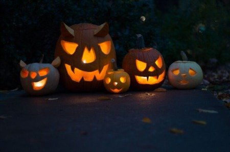 Halloween Light Shows Come To Tampa Bay Area