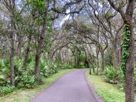 The Best Nature Parks In The Tampa Bay Area