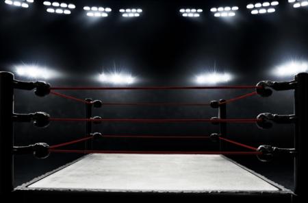 WWE Brings Wrestlemania to Tampa