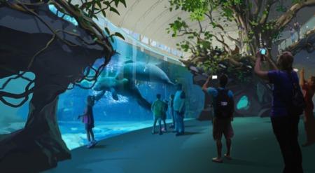Clearwater Aquarium Planning Huge Expansion