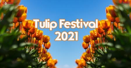 Ottawa Tulip Festival 2021