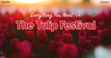 Everything You Need For The 2021 Tulip Festival