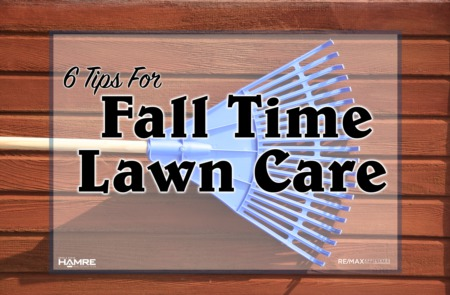 6 Tips for Fall Time Lawn Care