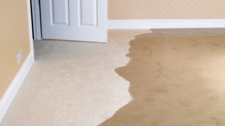Do You Have a Water Leak Detector?