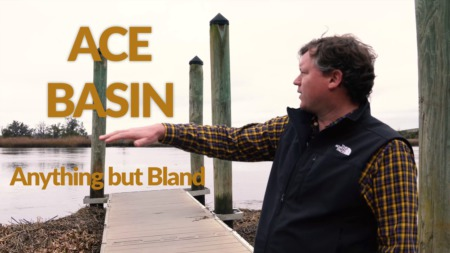 Anything but Bland- ACE Basin