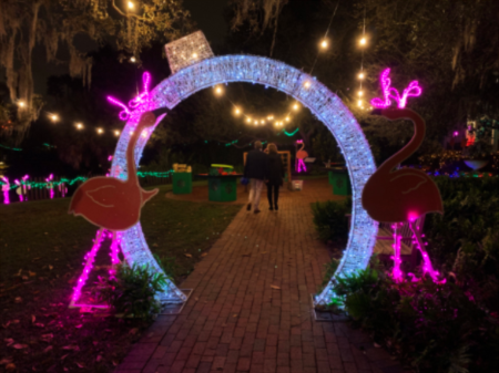 Selby Gardens Lights in Bloom Event