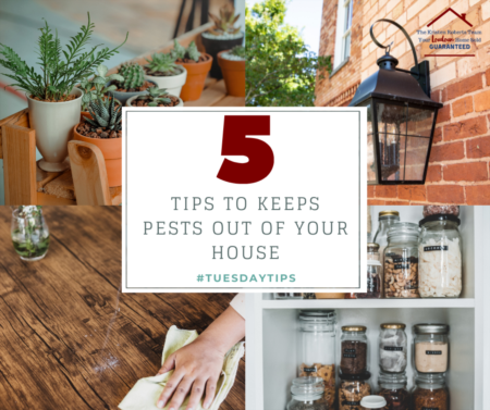 #TUESDAYTIPS 5 TIPS TO KEEP PESTS OUT OF YOUR HOUSE