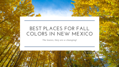 Where to See Fall Colors in New Mexico