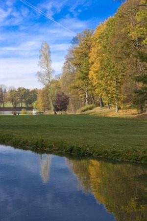 Where Are the Best Leaf Peeping Spots in Our Area?