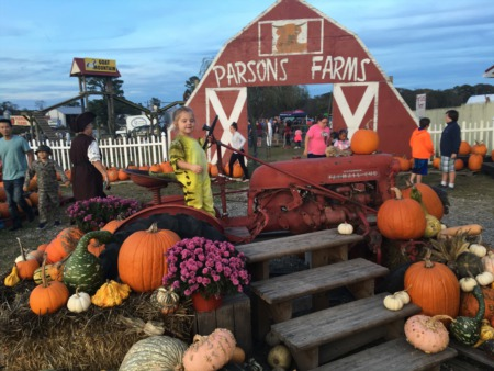 Dagsboro's Parsons Farms - Where High Quality Produce and Family Fun Go Hand-In-Hand