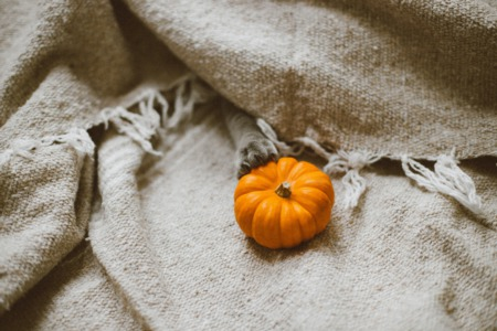 5 Must Attend Fall Events For Your Calendar In Fulshear TX