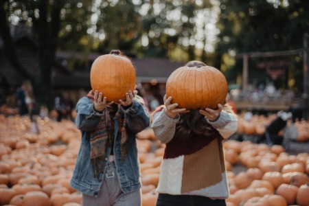 Looking for Fall family fun? | Pumpkin Patches in Houston TX | Things to do in Houston!