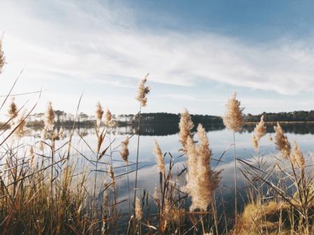 Best Lake Conroe Neighborhoods
