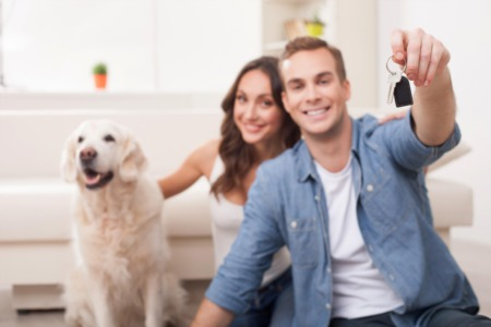 Do's And Don'ts for Moving With Pets in Memphis