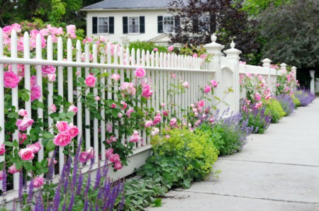 Curb Appeal on a Budget: 7 Tips to Make Your Yard Stand Out