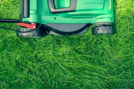 Happy Lawn & Garden Month!