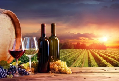 What is the Patuxent Wine Trail?