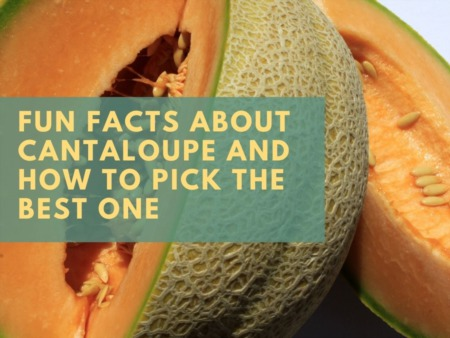Fun Facts About Cantaloupe and How to Pick the Best One