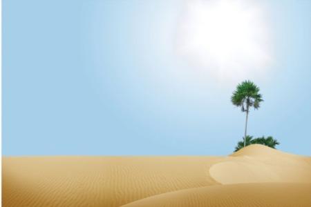 Sua Casa Vai Ser Como Um Oásis em um Deserto de Estoque