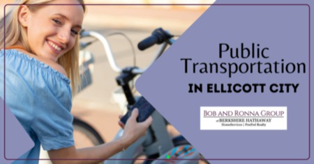 How to Use Ellicott City Public Transportation: A Local's Guide to RTA & MDOT