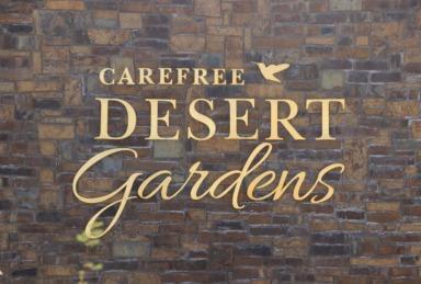 Carefree, AZ Desert Gardens