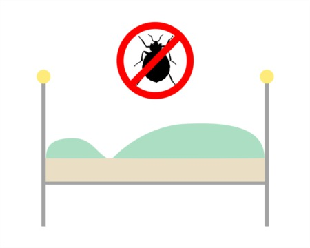 What Not to Do When You Have a Bed Bug Infestation