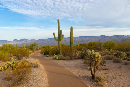 Buying a House in Arizona Remotely—a Step-by-Step Guide