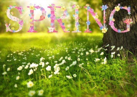 Spring is here: Let's get started!