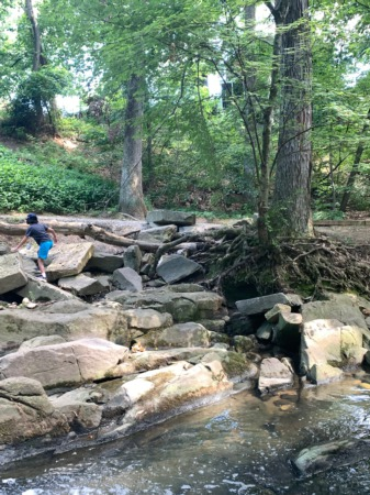 A Creek with Rocks? We're there!
