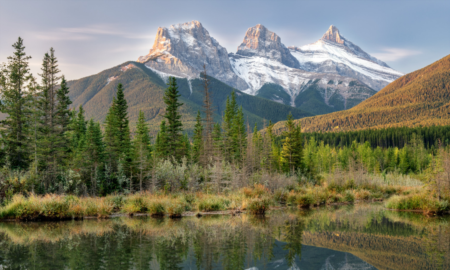 What's New in Canmore and Area for 2019