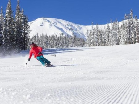 The Breck Wire - January 2019
