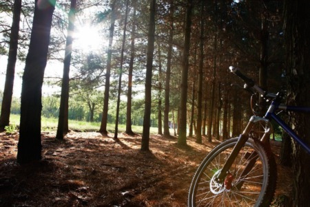 Breckenridge Mountain Biking For Beginners: Best Places to Ride