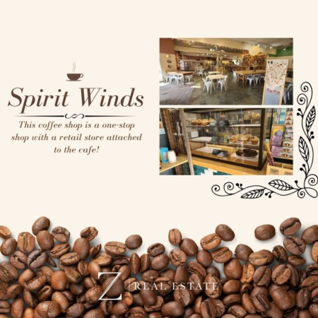 Las Cruces Real Estate | Local Business Shoutout - Spirit Winds