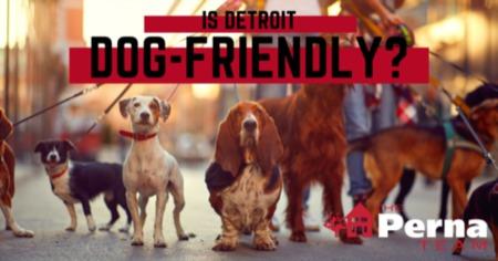Is Detroit Dog-Friendly?